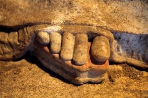 Caryatid toe