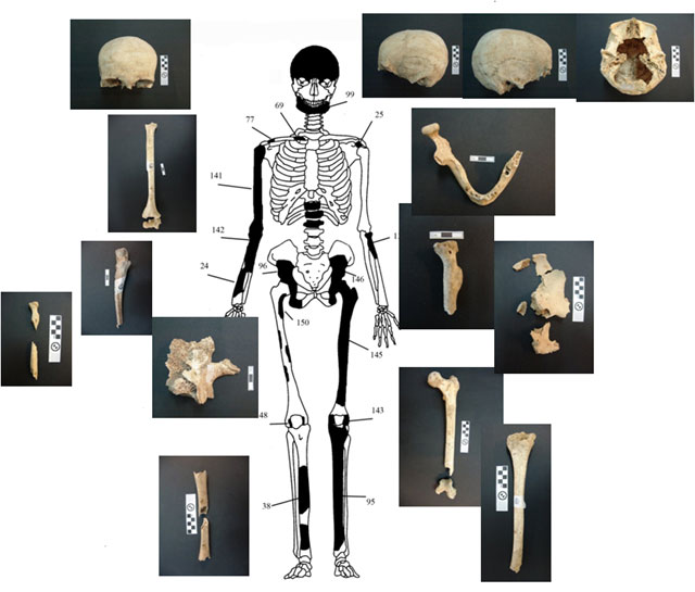 amphipolis skeleton