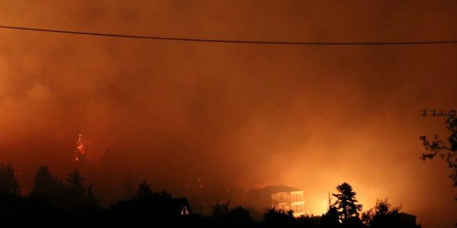 Locals and tourists evacuated as wildfire rages in Kefalonia (pictures, video)