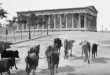 Exhibition Athens 1917: Rare visual material shot by the French Army of the Orient (video)